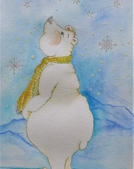 osopolar mirando constelación